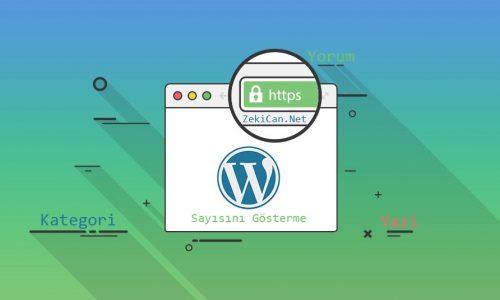Wordpress Kategori Yorum ve Yazı sayılarını gösterme