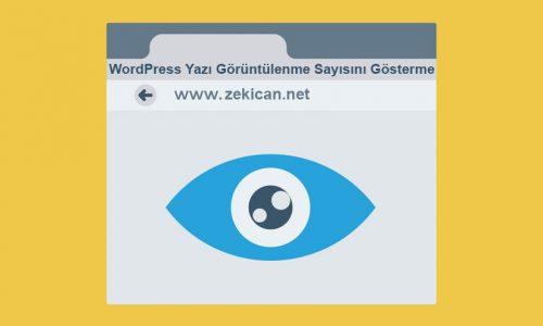 WordPresste Yazının Görüntürenleme Sayısını gösterme