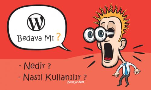 WordPress Nedir Nasıl Kullanılır