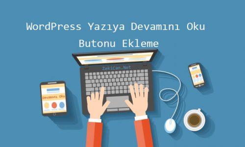 WordPress Devamını Oku Butonu Ekleme