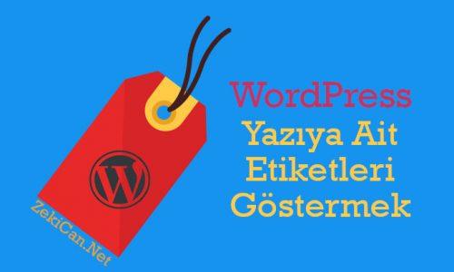 WordPress Etiketleri Gösterme