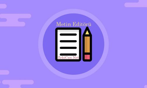 WordPress Metin Editörü