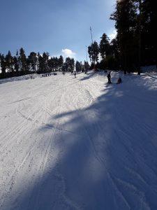 Sarıkamış Kayak Merkezi ve Orman