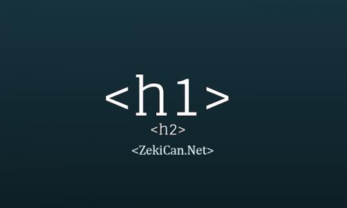 h1 etiketi kullanımı