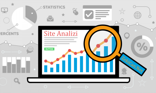 Web Site Analizi