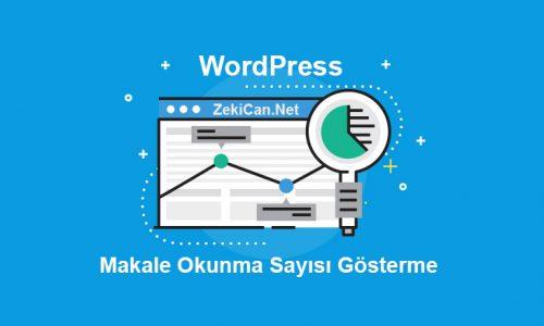 WordPress Makale Okunma Sayısını Gösterme Eklentisiz