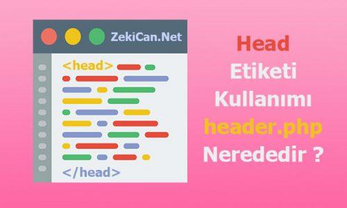 Head Etiketi Kullanımı