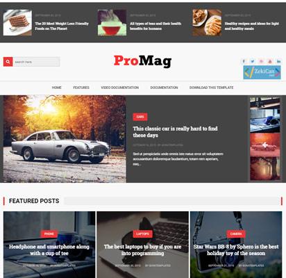 Promag Blogger Teması