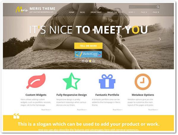 Meris Ücretsiz WordPress Teması