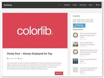 Sparkling Ücretsiz WordPress Teması