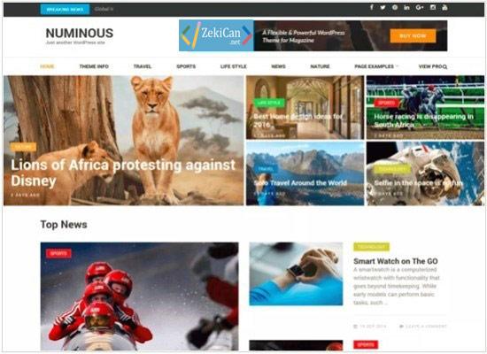 WordPress Teknoloji Teması Numinos