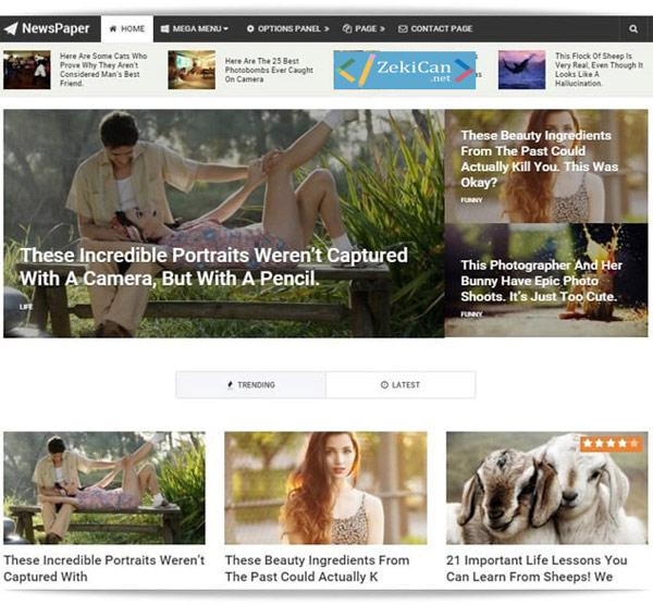 WordPress En iyi Teknoloji ve Haber Teması