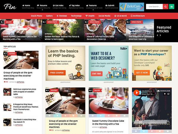 Pin WordPress Teması İndir