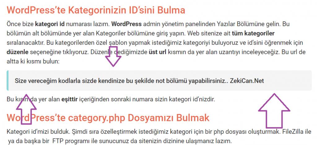 WordPress te Not Bölümleri Ekleme